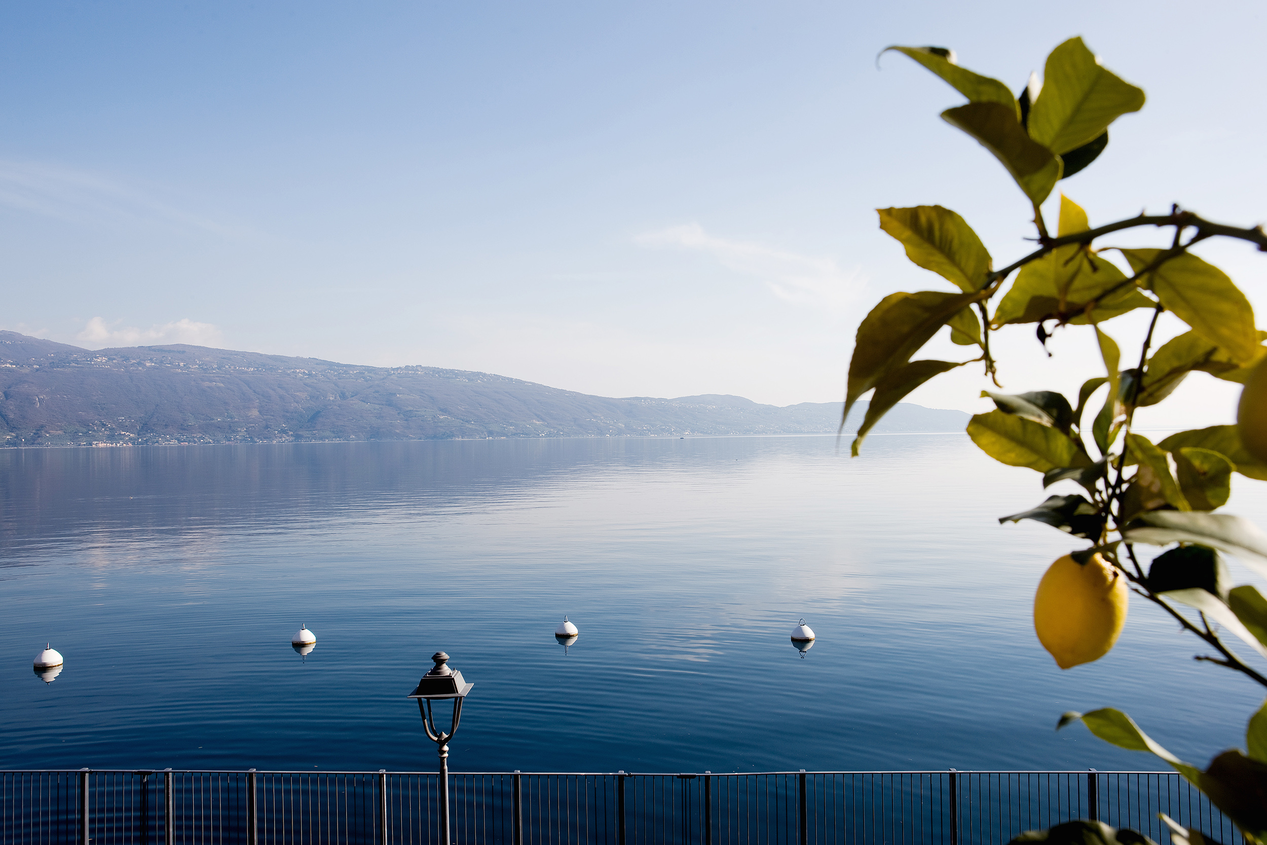 La trattoria si trova immersa nella meravigliosa cornice del lago di Garda